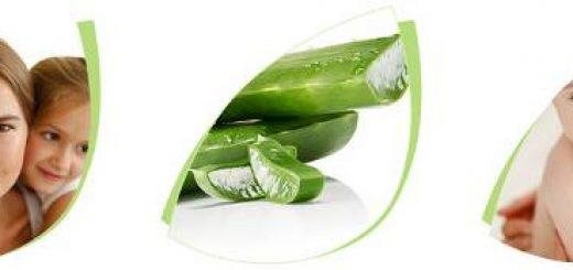 Beitragsbild zum Artikel Tolle Aloe Vera Produkte aus dem LR Katalog online günstig kaufen.